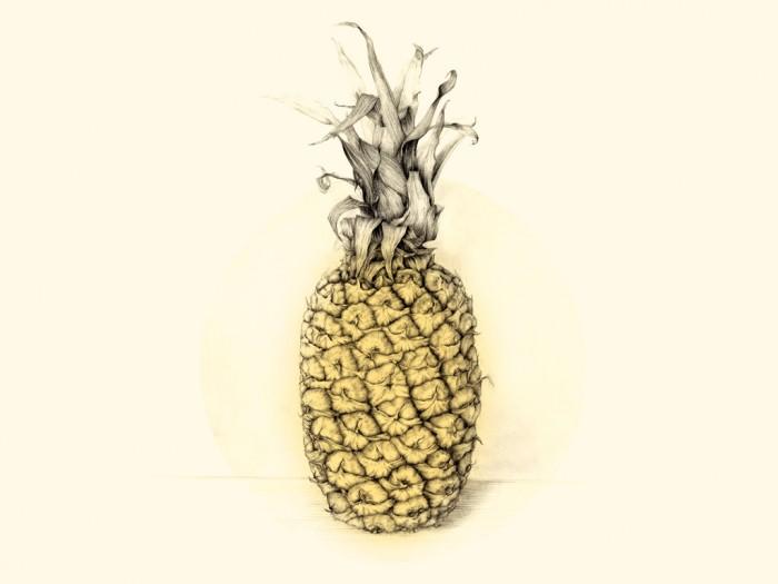 curso-de-dibujo-botanica-5