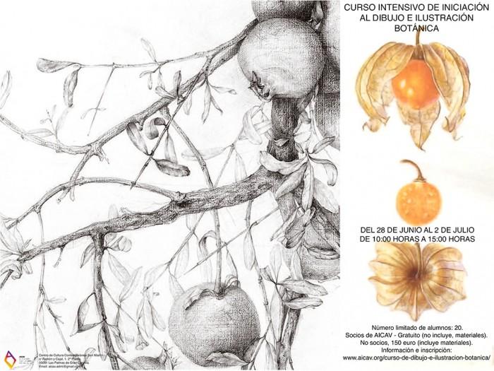 flyer-curso-ilustracion-botanica
